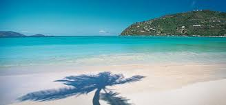 A Palm Tree Shadow On The Blue Water Of Magens Bay One Most St Thomas